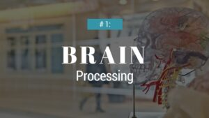 Humans process visual information faster than text